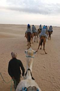 Excursiones en camello en Túnez (Foto Flickr de sulka)