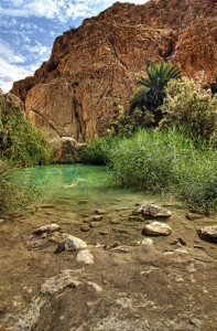 Cascadas de Chebika en Túnez (Foto Flickr de ••>X n d<••)