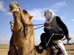 Festival Internacional del Sáhara en Douz (Foto flickr de tunisian)