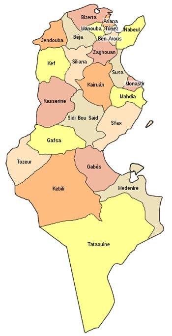 Organización Territorial de Túnez