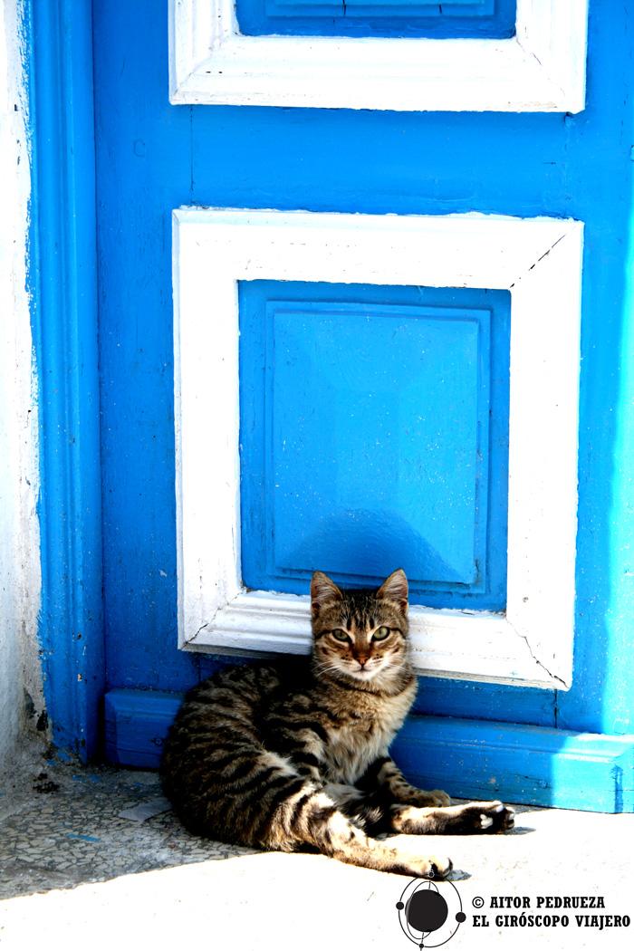 Las casas de colores de Túnez