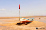 Lago Salado Chott El Jerid